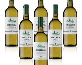Vino Bianco Vernaccia di San Gimignano DOCG Bertesca Conf. da 6 Bottiglia/e