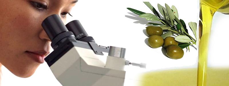 analisi-olio