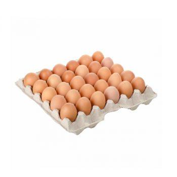 uova-fresche